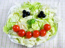 Smiling salad Royalty Free Stock Image