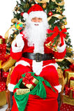 Smiling Santa and Christmas Tree Royalty Free Stock Photos