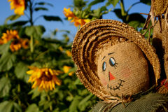 Smiling Scarecrow Royalty Free Stock Photo
