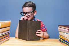 Smiling schoolboy with book sitting at the desk Stock Image