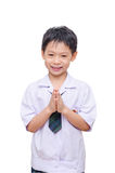 Smiling schoolboy in uniform Stock Photos