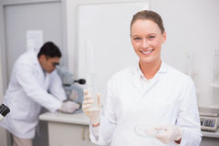Smiling scientist filling a petri dish Stock Photos