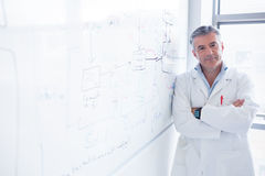 Smiling scientist leaning against the whiteboard Royalty Free Stock Photography