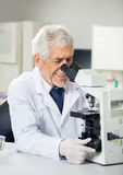 Smiling Scientist Using Microscope In Laboratory. Smiling senior male scientist using microscope in laboratory Stock Photography