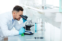 Smiling Scientist Working on Research in Laboratory Stock Image