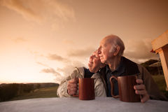 Smiling Senior Couple stock image