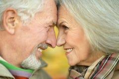 Smiling senior couple stock images