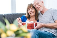 Smiling senior couple exchanging gift stock images