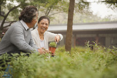 Smiling senior couple in garden Stock Photo