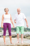 Smiling senior couple. Happy and smiling senior couple at the beach stock image
