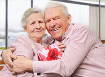 Smiling senior couple hugging Royalty Free Stock Images