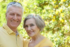 Smiling senior couple outdoors Stock Images