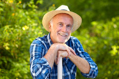 Smiling senior gardener Royalty Free Stock Images