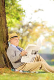 Smiling senior gentleman seated reading a newspaper at autumn. Smiling senior gentleman seated reading a newspaper in a park at autumn Royalty Free Stock Photos