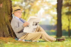 Smiling senior gentleman seated reading a newspaper in a park at. Smiling senior gentleman seated on a grass reading a newspaper in a park at autumn Stock Photo