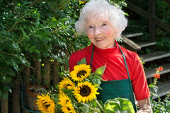 Smiling senior lady gardening in her yard. Royalty Free Stock Photography