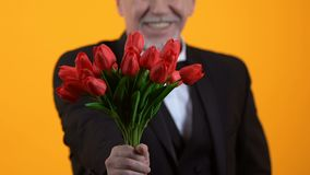 Smiling senior male presenting red tulips, well-mannered gentleman on date stock video