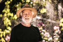 Happy aged man spending time in sunny park stock images