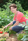 Smiling senior woman in garden Stock Photos
