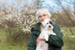 Smiling Senior woman with her dog in the spring park Royalty Free Stock Photos
