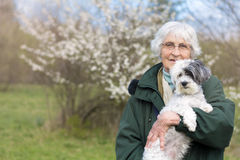 Smiling Senior woman with her dog in the spring park Royalty Free Stock Image