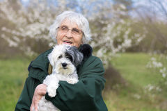 Smiling Senior woman with her dog in the spring park Royalty Free Stock Images