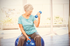 Smiling senior woman holding dumbbell. While sitting on exercise ball at home Stock Photo