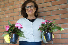 Smiling senior woman holding flowers Royalty Free Stock Photo