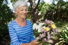 Smiling senior woman holding fresh flower bouquet Royalty Free Stock Image