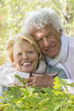 Smiling senior woman and man with arms around at the park Royalty Free Stock Images