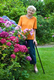 Smiling Senior Woman Standing at the Flower Garden Stock Image