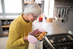 Smiling senior women holding freshly baked muffins. Smiling senior woman holding freshly baked muffins wearing oven gloves stock photos