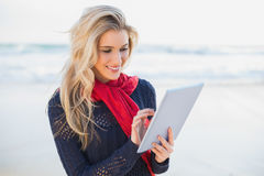 Smiling blonde using tablet computer Royalty Free Stock Image