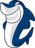 Smiling shark. Smiling blue shark  cartoon illustration Royalty Free Stock Photography