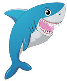 Smiling shark Stock Images