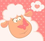 smiling sheep with butterfly Stock Photos