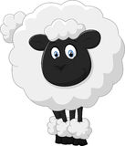 Smiling sheep cartoon Royalty Free Stock Images