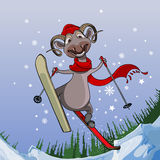 Smiling sheep flies with snowy mountains on skis Royalty Free Stock Photos