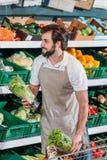smiling shop assistant arranging fresh vegetables stock photography