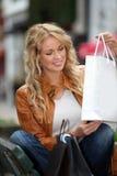 Smiling shopping girl Royalty Free Stock Image