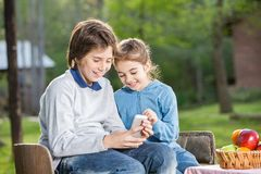 Smiling Siblings Using Cellphone At Campsite Royalty Free Stock Photos