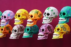 Smiling skull Stock Photography