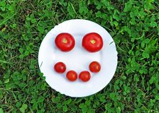 Cheerful smiley from fresh tomato on a round white plate in the grass. royalty free stock photo