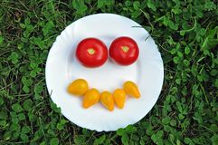 Cheerful smiley from fresh tomato on a plate. royalty free stock images