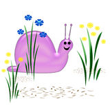 Smiling Snail Royalty Free Stock Image
