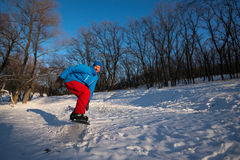 Smiling snowboarder is jumping during riding in the winter fores. T. Wonderful evening at winter holidays Royalty Free Stock Images