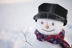 Smiling snowman Royalty Free Stock Photo