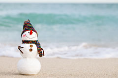 Smiling snowman on the sea beach Royalty Free Stock Photography