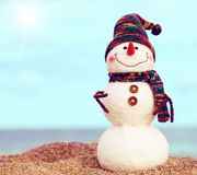 Smiling snowman on the sea beach Stock Photography