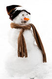 Smiling snowman in the snow. Smiling snowman with carrot nose, hat and scarf Stock Images